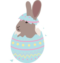 Cute easter baby bunny hatched from one egg vector