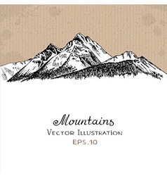 Mountains forest white vector