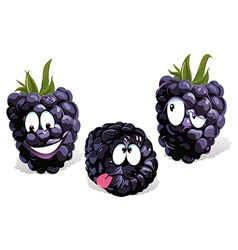 Blackberry cartoon vector