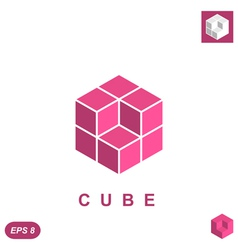 Cube isometric logo concept vector