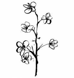 Cherry blossom ink illustration vector
