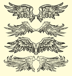 Wings hand drawn vector