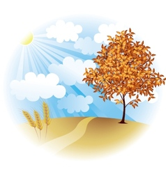 Autumn field vector