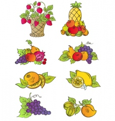 Vintage fruits set vector