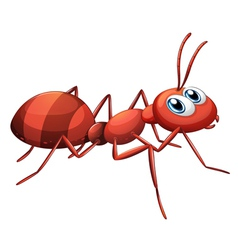 A big red ant vector
