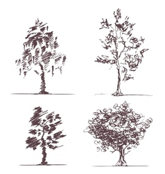Set of four sketches trees vector