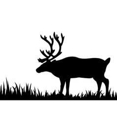 Silhouette of deer in the grass vector