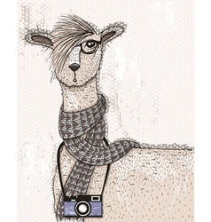 Cute hipster lama with photo camera glasses vector