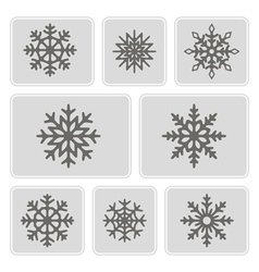 Monochrome icons with snowflakes vector