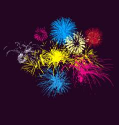 Fireworks on night sky vector