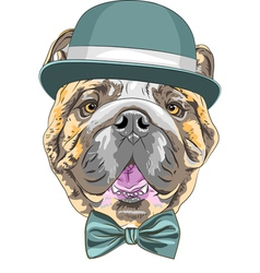 Hipster dog english bulldog breed vector