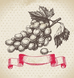 Wine vintage background with grapes vector