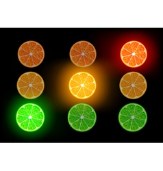 Orange lime and grapefruit vector