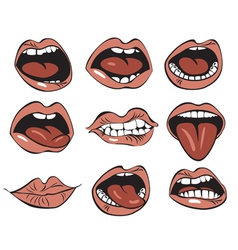Nine mouths vector