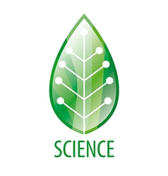 Chip logo in green leaf vector