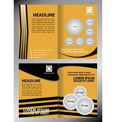 Professional business flyer template or corporate vector