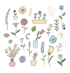 Set of spring plants and flowers vector