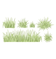 Hand drawn grass set vector