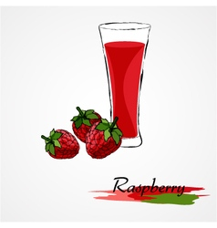 Raspberry juice vector