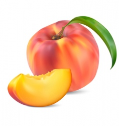 Peaches with leaves and slices vector