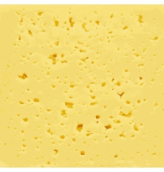 Background of fresh yellow swiss cheese with holes vector