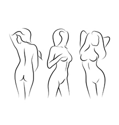 Women naked human beauty body drawing vector