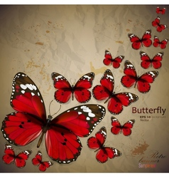 Colorful vintage background with butterfly grunge vector