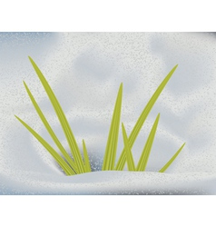 Green grass in snow vector