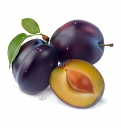 Plum and leaf pattern vector