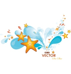 Water spray and sea-stars vector