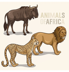 African animals set2 vector