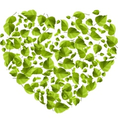 Heart made of green leaves eco concept vector