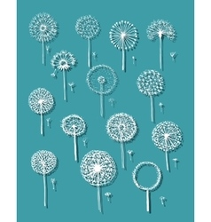 Dandelions collection sketch fro your design vector