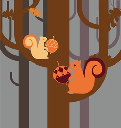 Wood squirrel with an acorn vector