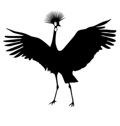 Silhouette of african crowned crane vector