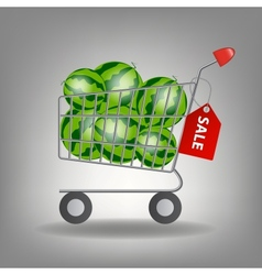 Full supermarket shopping cart with wate vector