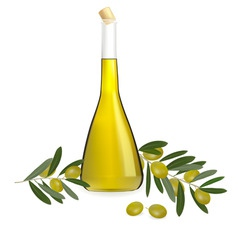Bottle of olive vector