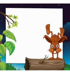 Rabbit banner vector