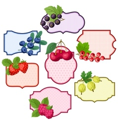 Set of various badges labels with berries vector