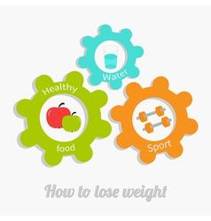 Colorful cogwheel gear set water apple dumbbel vector