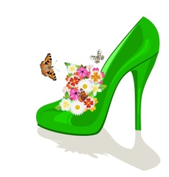 Shoes flowers and butterflies vector