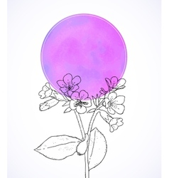 Ard with botanical drawing of longwort flower vector