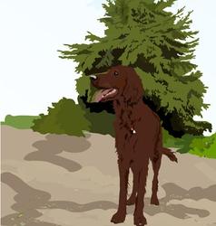 Dog near the tree vector