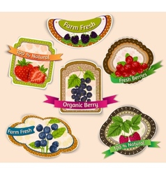 Berries emblems set vector