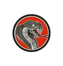 Cobra viper snake circle retro vector