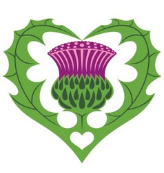 Scottish heart and thistle vector