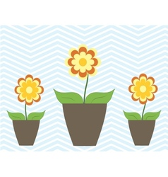 Summer spring colorful flowers in pot cosy home vector