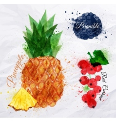 Fruit watercolor pineapple bramble red currant vector