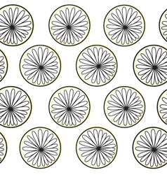 Beautiful contrast citrus slices isolated on white vector