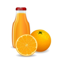 Bright orange with juice on white background vector